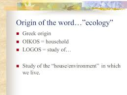 professor felipe martínez samarripa origin of the word ecology