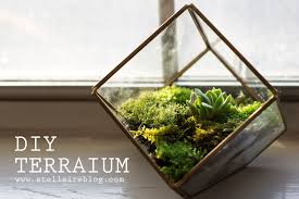 what it means to decorate with terrariums u2013 key tips and details