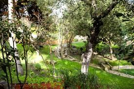 outdoor wedding venues in orange county montecito gardens wedding and events orange county san juan