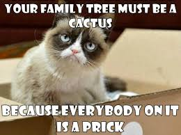 Memes Of Grumpy Cat - 32 funny angry cat memes for any occasion freemake