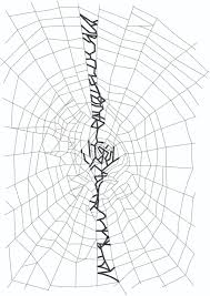 halloween spider webbing transparent background spider pictures photos u0026 images of various spider species