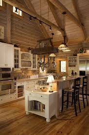 Black Rustic Kitchen Cabinets Kitchen Enjoyable Rustic Kitchen Decor With Wood Wall And