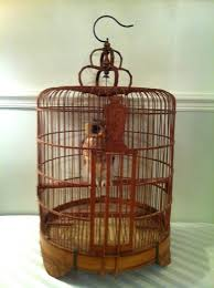bird cage with flower wood cages vintage wine rack u2013 www off on co