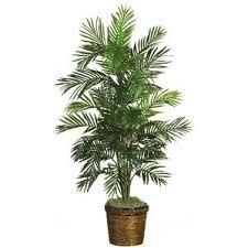 faux plants trees joss