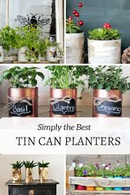 five of the best tin can planters you will want to make pillar