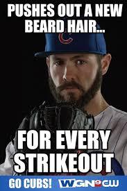 Cubs Fan Meme - 376 best cubs fan images on pinterest chicago cubs go cubs go