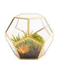 faux succulent geo terrarium artificial plants t j maxx