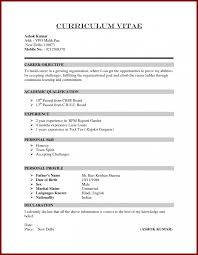 Example Of Australian Resume How To Write A Cv In For Job Application 386 Splixioo