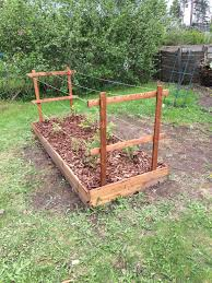 trellis for raspberries by lboy lumberjocks com woodworking