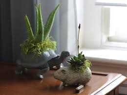 How To Make A Succulent Planter Diy Plastic Animal Planters Ehow Home Ehow