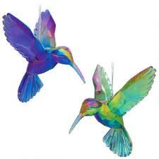 bird animal birds flowers insects nature