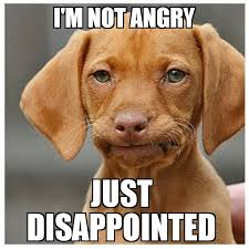 Disappointed Dog Meme - made a new one disappointed dachshund memes