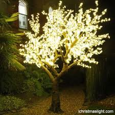41 best led cherry trees images on cherry tree