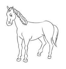 horse sketch royalty free vector image vectorstock