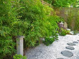 Backyard Plants Ideas Japanese Garden Backyard Plants Margarite Gardens
