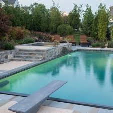 47 best 808 pool designs images on pinterest pool designs pool