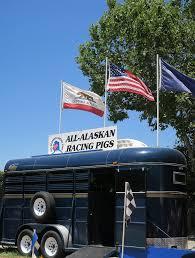 California Flag Horse Alameda County Fair Catherine Gacad