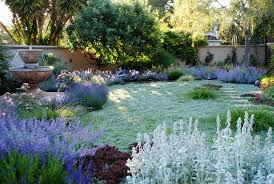 excellent best time of day to water garden design gallery image