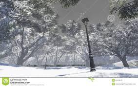 winter garden stock illustration image 47028878