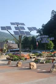 solar trees saving energy in the one feather