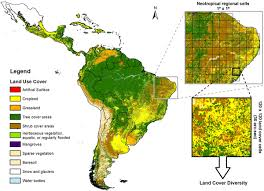 disentangling the role of climate topography and vegetation in