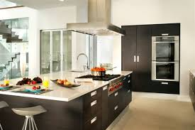 Designing Kitchens Design Kitchen European Style Kitchens With Back Lighting