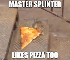 Memes About Pizza - pizza rat memes imgflip