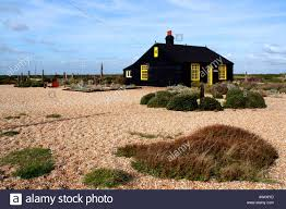 Cottage By The Beach by Prospect Cottage On The Beach At Dungeness In Kent Uk Stock Photo