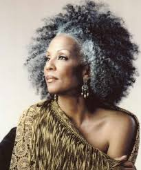 hairstyles for black women over 50 years old beautiful silver haired black women embracing gorgeous grey hair