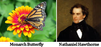 happiness is a butterfly which when pursued seems always just