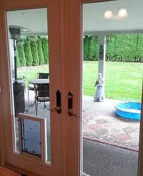 doggy door glass door dog doors door glass 4 pets