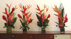 tropical flower arrangements fresh cut tropical flowers exotica tropicals tropical plants