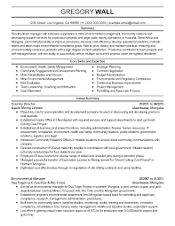 Resume Sample Executive by Professional Environmental Manager Templates To Showcase Your