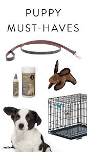 Petsmart Small Animal Cages 75 Best Puppy 101 Images On Pinterest Actors Puppies And Tips