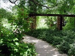 native texas plants for shade frito lay campus david rolston landscape architects dallas