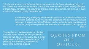 bureau direct assurance careers