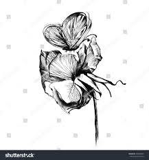 black white butterfly flower tattoo stock illustration 238558402