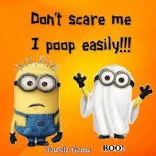 best halloween quotes images and pictures hd 2016 851 best all things halloween images on pinterest halloween