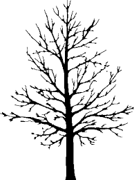 print coloring pages outline of tree without leaves 7416