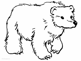 printable polar bear coloring pages for kids u2014 fitfru style