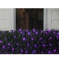 northlight 4 x 6 purple led net style lights green wire