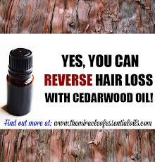 essential oils for hair growth and thickness cedarwood essential oil for hair loss how it works usage tips