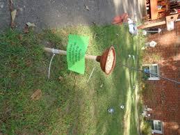 bird feeder toilet plunger dollar tree purchase add