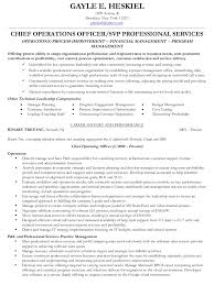 Resume It Sample by Gayle Heskiel Coo Vp Professional Services Resume