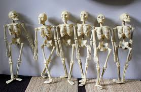 53 plastic outdoor decor skeleton halloween garden decorations
