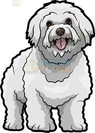 bichon frise quilt a lovely bichon frise dog