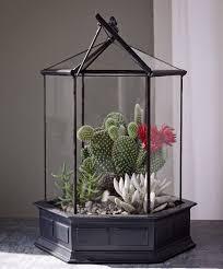 amazon com h potter six sided glass terrarium wardian case plant