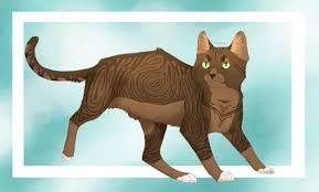 cats afterpains tetmu33 jasmine more deviantart