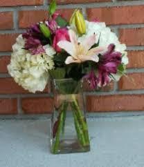 florist melbourne fl melbourne florist melbourne fl flower shop violets in bloom