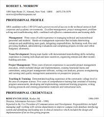 mba resume 9 free samples examples format